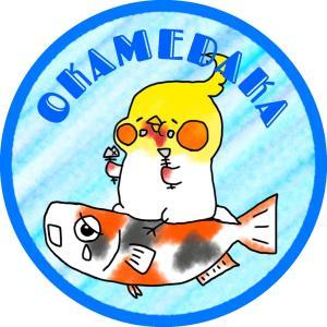 OKAMEDAKA 日々の出来事を・・・