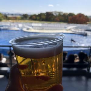 京都飲み歩き記録