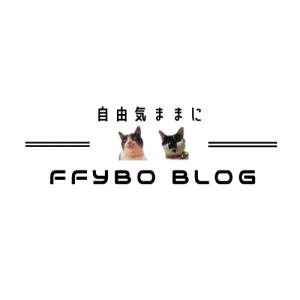 FFYBO BLOG