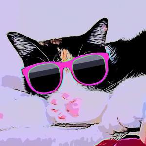 "OjoKuro(おじょくろ)-「猫」と「てっぺんファーム」And ""English blog"""