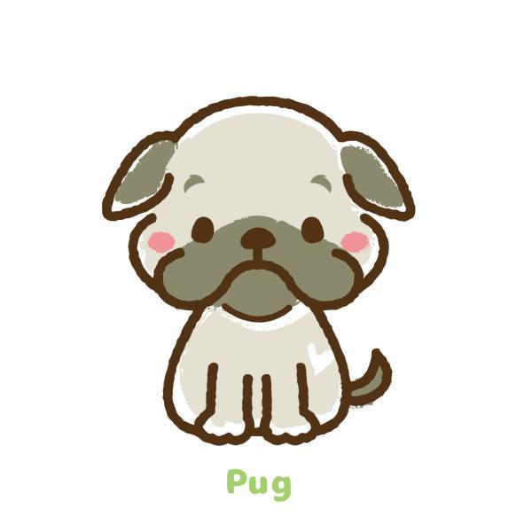 Pugさんのプロフィール