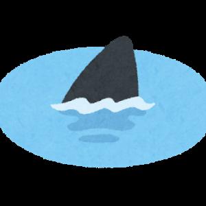 IT-SHARK