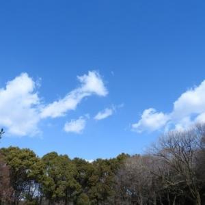 大阪で自由気ままに生きる道