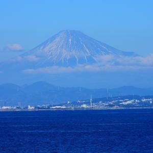 富士山と散歩