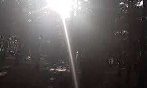 自然な音のASMRと無料の音楽と歌詞