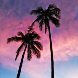 ハワイって知ってる?