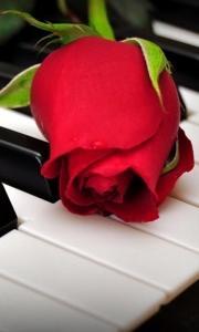 miaru ピアノLABO
