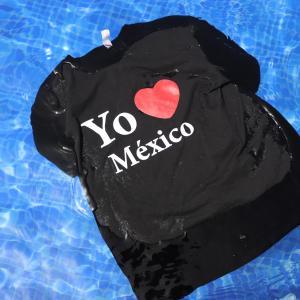 メキシコ駐在子育て日記