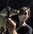 マジスの釣りブログ&インプレ