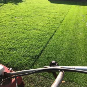 自宅の庭に作ったアプローチ&パッティンググリーンの管理