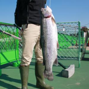 みんなどうしてる?-keyの釣りや日常の備忘録ブログ