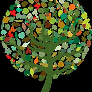 family leaf