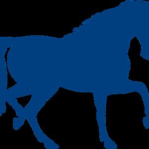 シックスセンス競馬ブログ