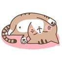 山猫の終活ブログ!【これからのお葬式と自然葬・永代供養に