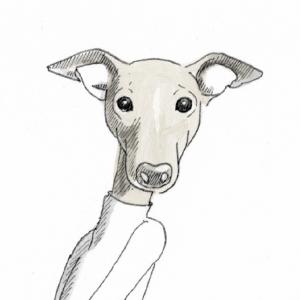 Inuusnb Illustration