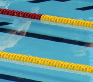 水泳選手コースの親ブログ