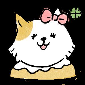 ねこぎふと【ねこ専門お悩み解決ブログ 】