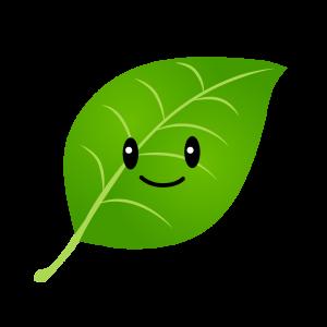 植物工場を夢見る水耕栽培日記