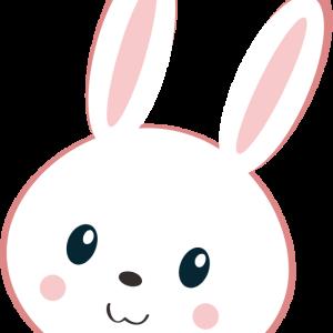 おうちごはんが楽しい!もぐもぐウサギのグルメログ