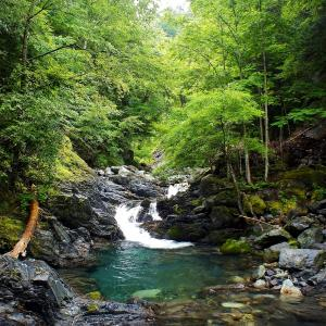 Let's Enjoy in a Blue Stream!