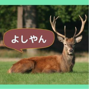 奈良県内公園めぐり
