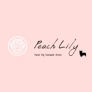 コーギー専門ブリーダー Peach Lily Dog | コーギーブログ
