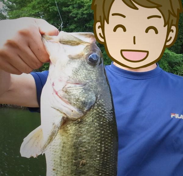 釣りキチSundayさんのプロフィール