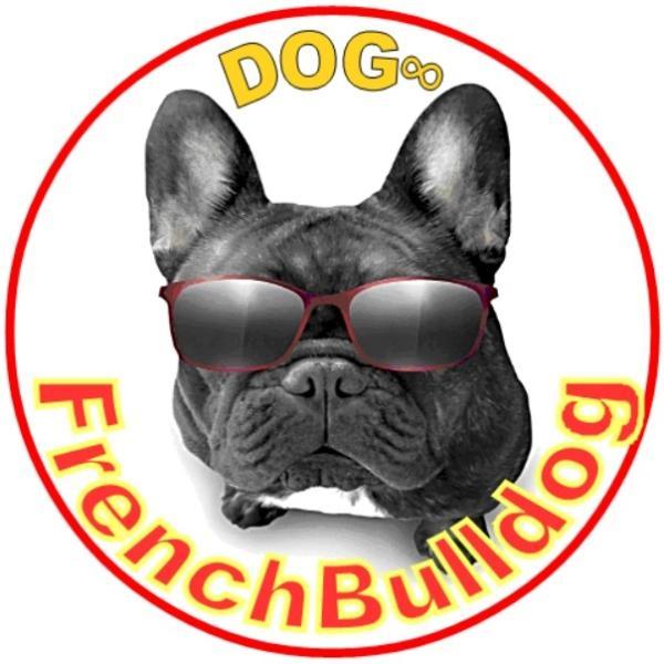 Dog8さんのプロフィール