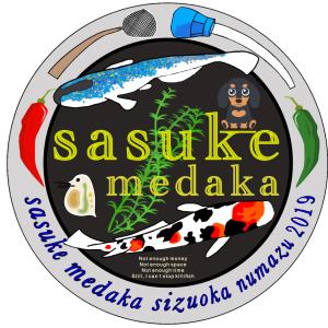 サスケメダカのブログ