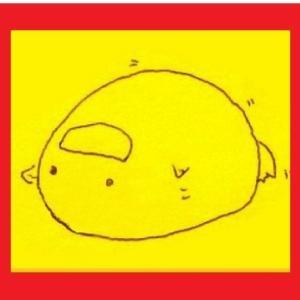 きいろいぴよ🐣~中国で巣ごもる日本語教師~ 日本語教師の教案本「盗み見教案 きいろいぴよ」の著者のブログ