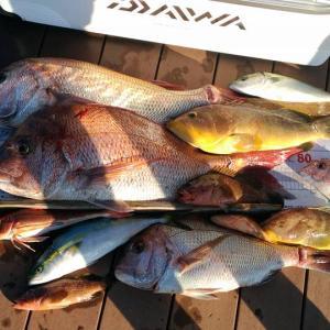 釣りの技法