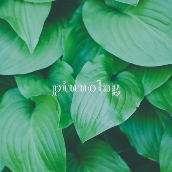 pinnologさんのプロフィール