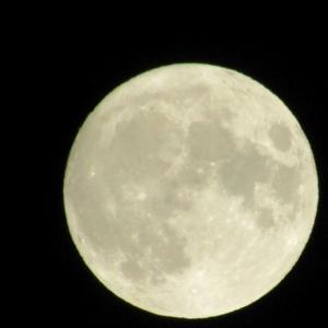 あなたを照らす月に僕がなろう