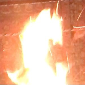 祈祷 占い ヒーリング 無料動画公開