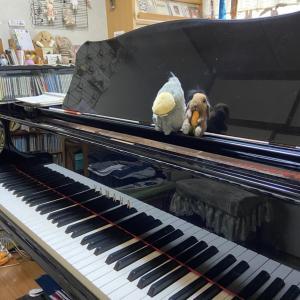 小川音楽教室