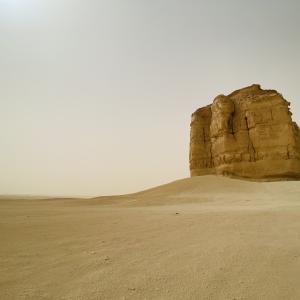 ポンコツサラリーマンの海外駐在ブログ 〜 サウジアラビアで孤独を友とせよ 〜