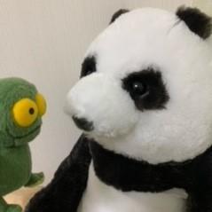 素人コメンテーターこうパンダのブログ