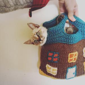 ネコと毛糸とコーヒーと