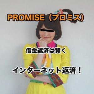 プロミス(PROMISE)7月の返済状況とインターネット返済のやり方
