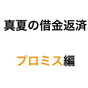 真夏の借金返済『プロミス編』