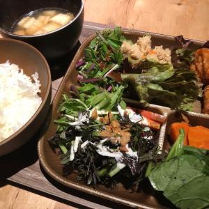 京都 烏丸 都野菜「賀茂」