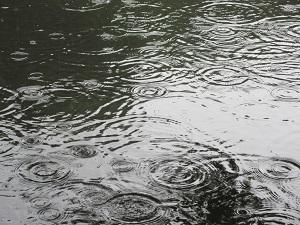 雨もまた楽し