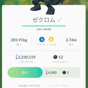 今日の朝活 2020.6.20