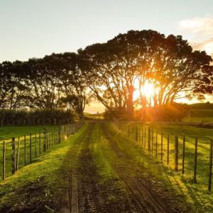 【田舎暮らしのメリットとデメリット】実際に暮らしてみて分かった意外と大変な田舎暮らし