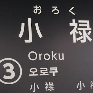 【ゆいレール小禄駅】沖縄移住の悩み!一人でも行きやすい外食店を3店舗紹介