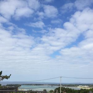 【沖縄移住】東京出張で気づく沖縄は遠きにありて思うものでもそんな悲しくはない