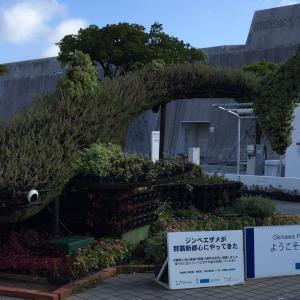 【ゆいレールおもろまち駅】駅チカのおすすめ観光スポットを3つ紹介