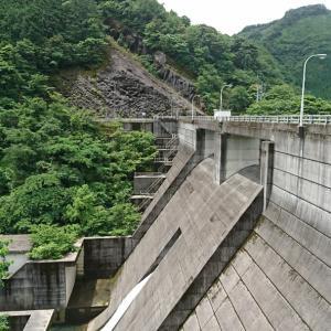 久しぶりの沖田ダムで出会ったのは?