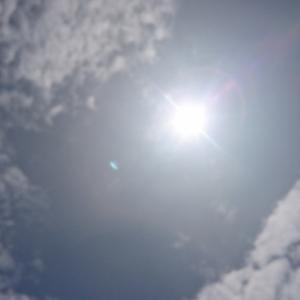 何日振りに太陽を見たことだろう⁉️