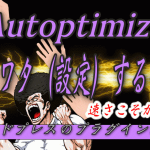 サイト高速化プラグイン「Autoptimize」【その真価はLazy load?!】